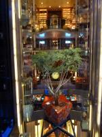 Celebrity Solstice - tree in atrium